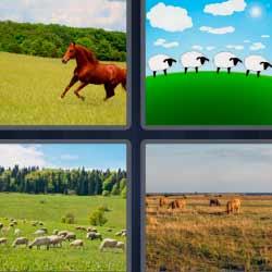 4 fotos 1 palabra caballo corriendo