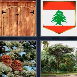 4 fotos 1 palabra bandera puerta de madera