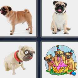 4 fotos 1 palabra perros