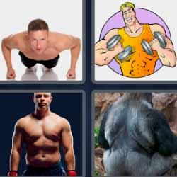 4 fotos 1 palabra gorila de espaldas