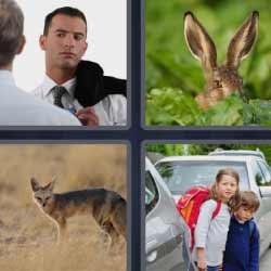 4 fotos 1 palabra orejas de conejo
