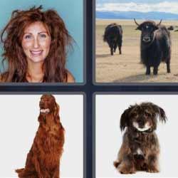 4 fotos 1 palabra mujer despeinada