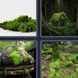 4 fotos 1 palabra casa en bosque
